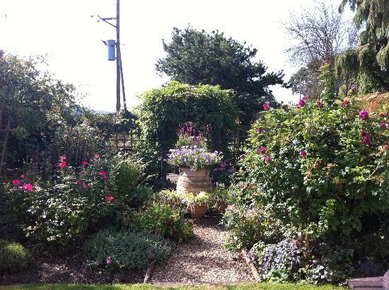 Marsh Farm Bed & Breakfast: The garden