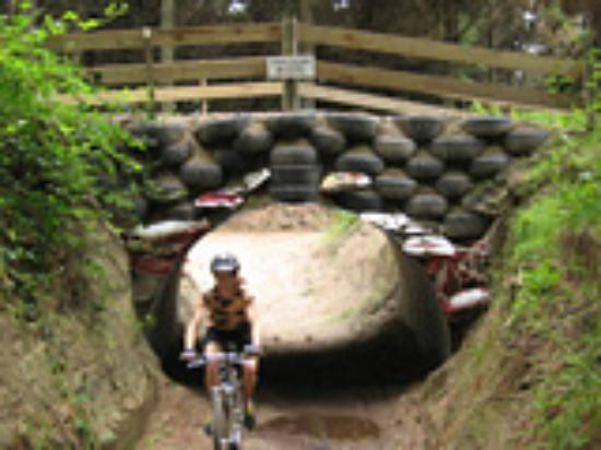 Wairakei Resort Taupo: Mountain Bike Tracks