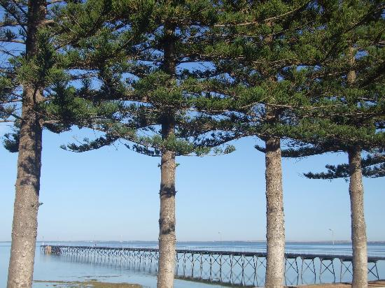 Ceduna Foreshore Hotel Motel: View from Hotel