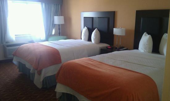 Blue Cypress Hotel : hotel1