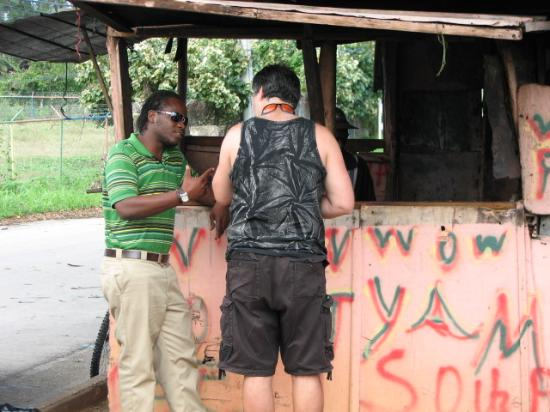 Know Jamaica Tours: The whole gang