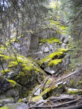 Basin Creek Lakes Trail : moss covered rocks