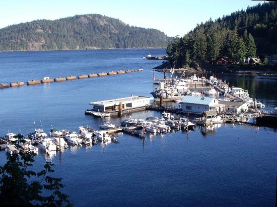 Brown's Bay Resort: Brown's Bay Marina