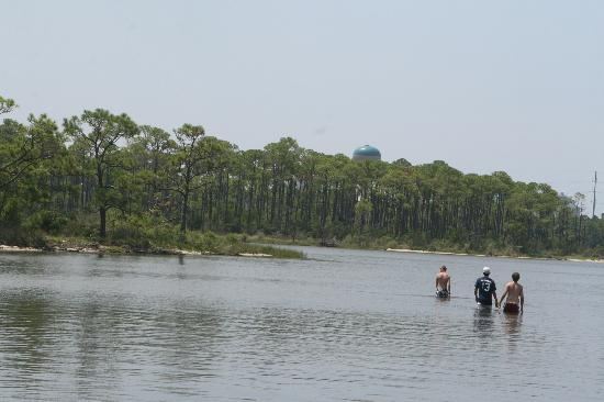 Jolee Island Nature Park: Our boys walked across the bay, on a day it was shallow. Loved the adventure, the island is in t