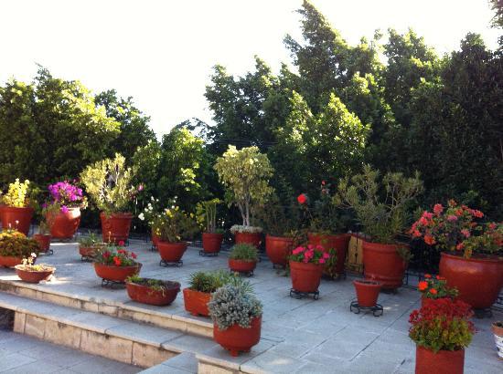 هوتل إيتانا: second floor terrace