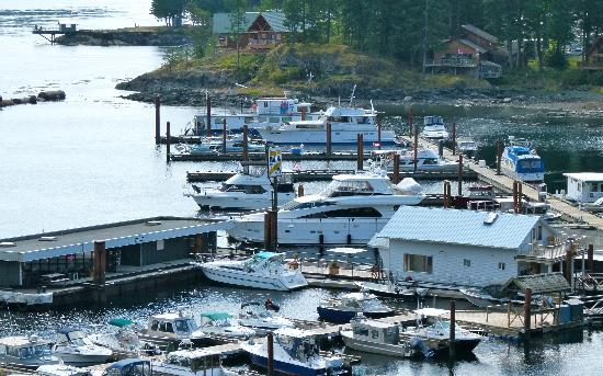 Brown's Bay Resort: 100 slip marina, fuel barge, tackle shop