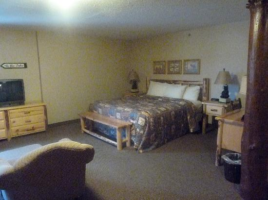 Stoney Creek Hotel & Conference Center - Moline: our room 2