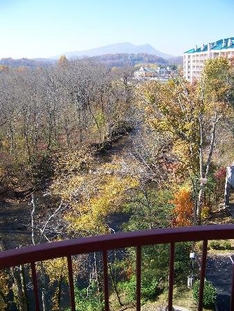River Bend Inn: Our View