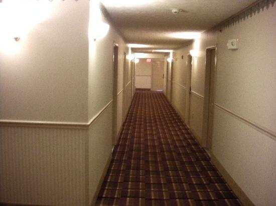 Park Grove Inn: hallway