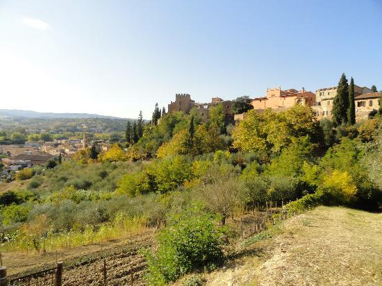 Albergo Il Castello: View from the surrounding grounds