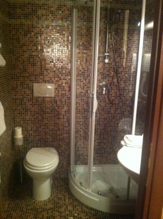 Nella maggioranza delle camere il bagno è piccolo, con doccia e ...
