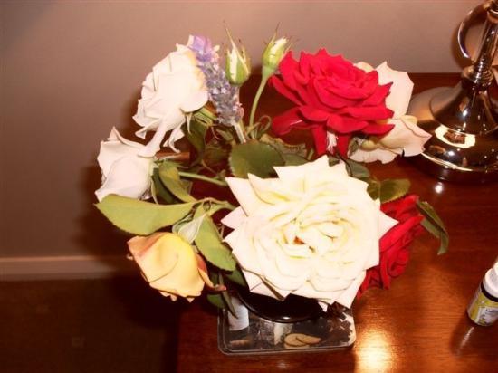 The Grange on Hermitage: roses