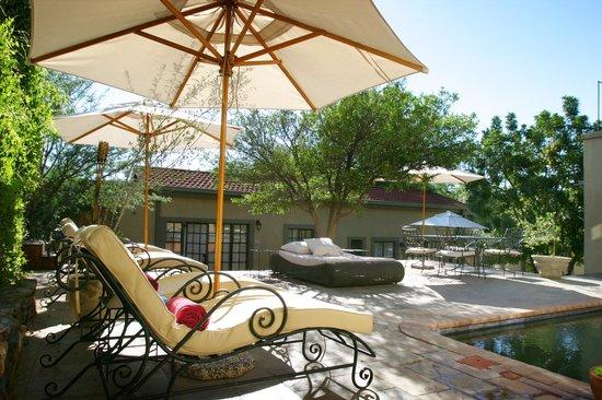 Olive Grove: Olive Grove pool