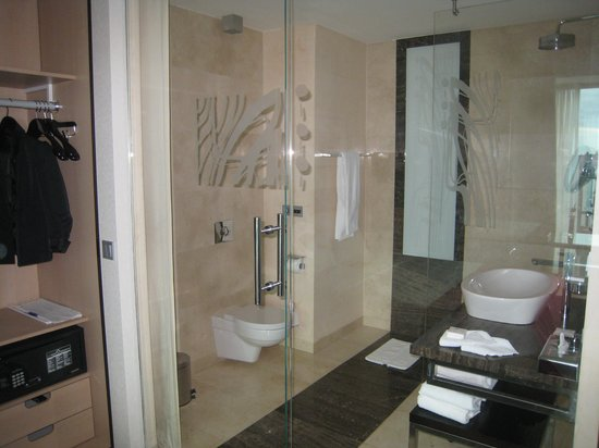 IBB Andersia Hotel: Туалет