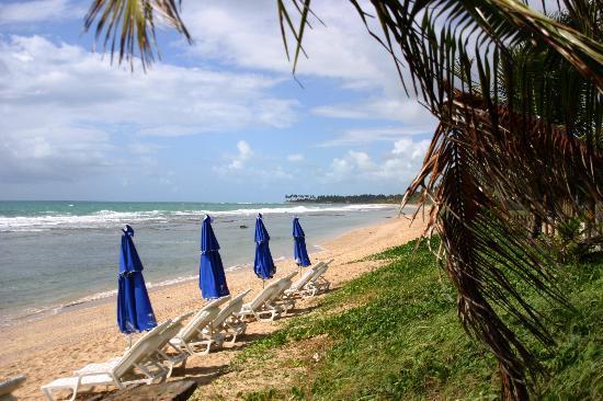 Grand Mercure Summerville Resort : praia