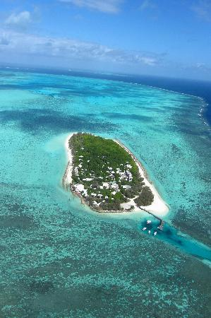 Heron Island Resort: View from helicopter