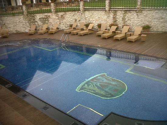 Hotel Friesacher: their pool