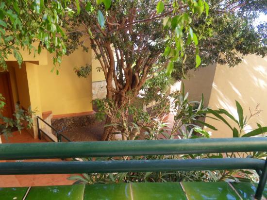 LABRANDA Oasis Mango: balcony view