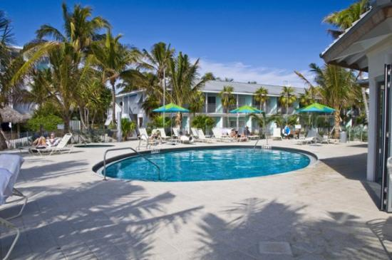 Naples Beach Hotel and Golf Club : New pool and Patio background