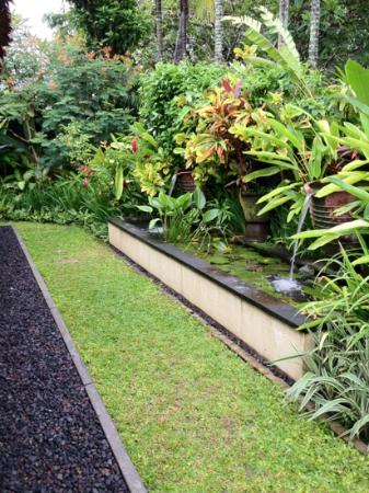 The Pavilions Bali: water feature in our garden