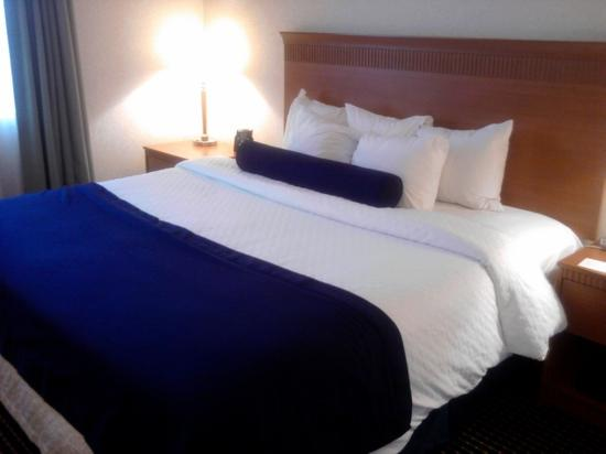 Embassy Suites by Hilton Lexington: comfy bed