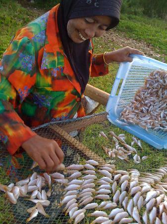Islanda Hideaway Resort: เช้าๆ เดินไปตามชายหาด ช่วยสาวมุสลิมเรียงปลา