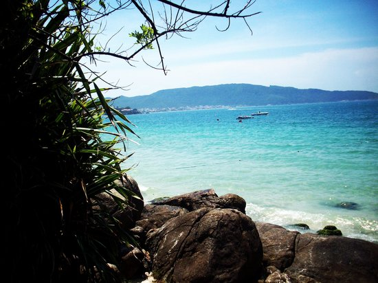 Bombinhas, SC: vista panoramica de la playa bombas