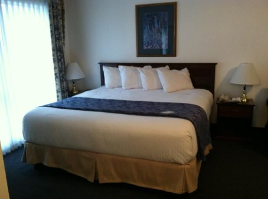 Best Western Grand Manor Inn: king bed