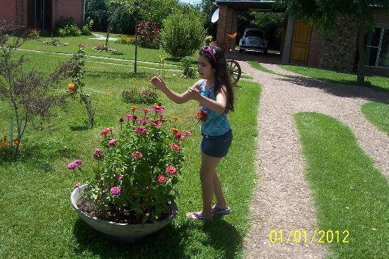 Foto de lugarcito san gregorio de polanco parque for Hule para estanque