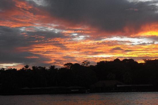 Pachira Lodge: puesta del sol en los Canales de Tortuguero