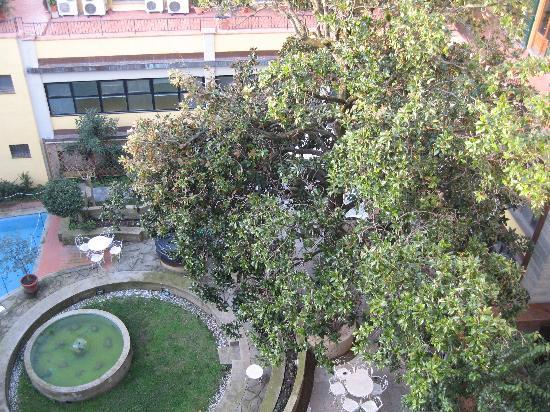 Croce di Malta Hotel : Pseudo jardín y piscina