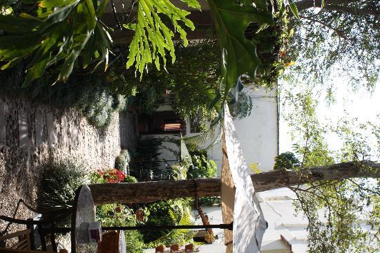 Rosa Morada Tlaquepaque: courtyard
