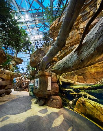 National Aquarium (Baltimore) - 2018 All You Need to Know ...