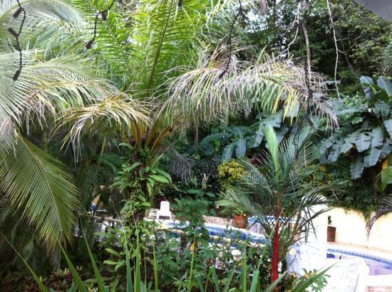 Hotel Villa Romantica: the pool