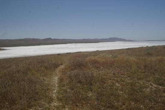 Soda Lake : Whole lotta nuthin'