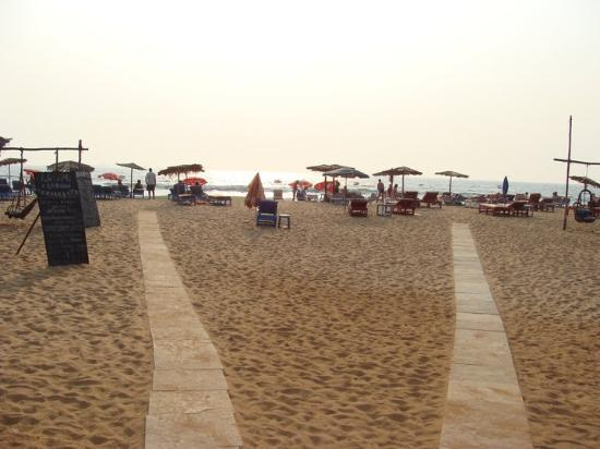 Hotel Goan Heritage: view of beach outside hotel