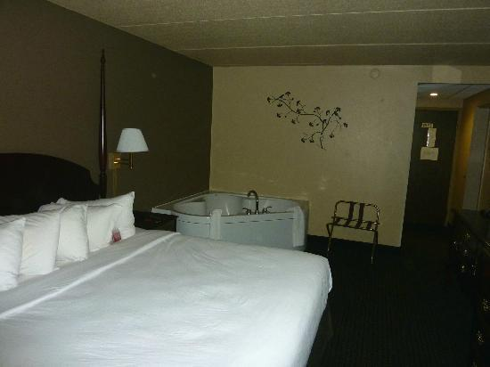 Ramada Plaza Green Bay: jacuzzi!