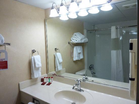 Ramada Plaza Green Bay: Bathroom