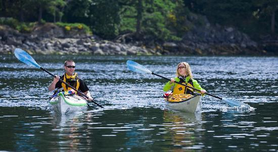 Ναναΐμο, Καναδάς: Kayak Nanaimo's protected harbour