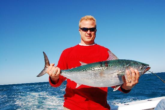 25lb trophy bonita picture of therapy iv deep sea fishing
