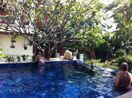 L'Orchidee Residences : piscine de villa