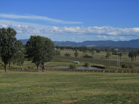 Blackwattle Luxury Retreats: Peaceful Rural view