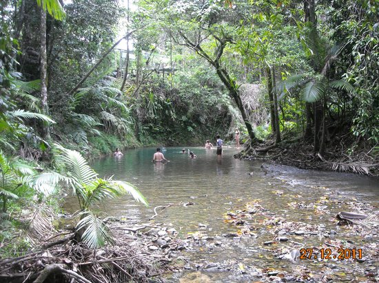Daintree Tours : Safe swimming hole @ Cooper Creek