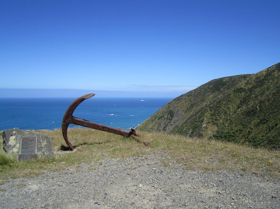 Kiwi Coastal Tours