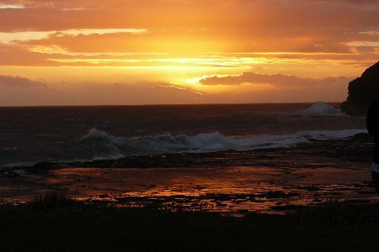 Curio Bay Camping Ground: sunset They are wow!!!