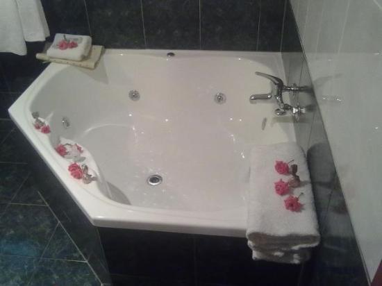 ‪هاروجايت جاردنز موتل هانمير سبرينجز: The spa bath in the bathroom with roses :)‬
