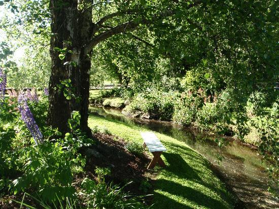 Mole Creek Guesthouse: gorgeous garden next to creek