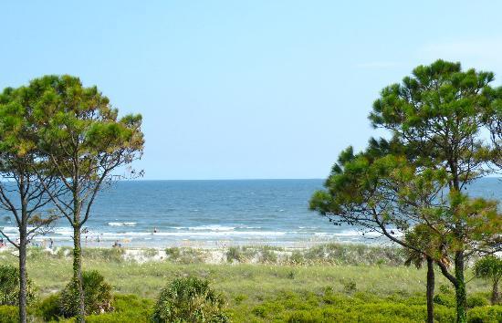 Coligny Beach: View from condo