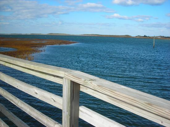Yarmouth, MA: Bass Hole Boardwalk 5