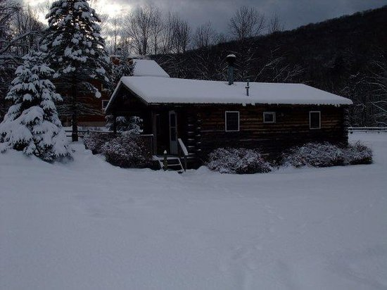Cold Spring Lodge: Log Cabin